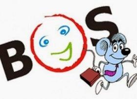 Permasalahan Dan Solusi Pelaporan BOS Online
